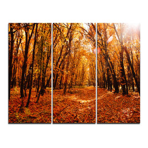 """""""Yellow Falling Leaves in Forest"""" Photo Wall Art, 3 Panels, 36""""x28"""""""
