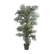 6.5 ft. Golden Cane Palm Silk Tree
