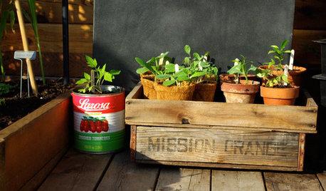 Der Garten im März – was jetzt zu tun ist