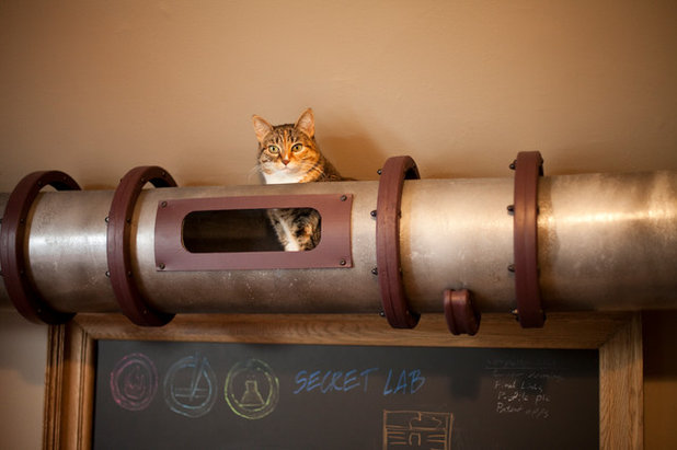 fun houzz create your own cat approved steampunk walkway ceiling fans designer looks new ceiling fan designs