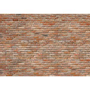 Brick Feature Wall Photo Wall Mural, 368x254 cm