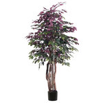 Vickerman - 6' Capensia Executive Tree in Black Pot - 6' Capensia Executive Tree featuring a real Dragonwood trunk and comes in a black plastic insertable pot, making this tree perfect for placing in the decorative container of your choice.