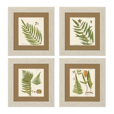 Fern (Set of 4) - 3641