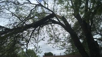 Trufast Tree Service, LLC