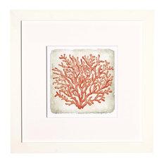 Coral in White #2 Artwork