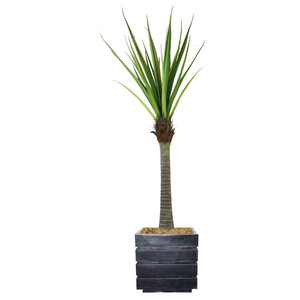 Artificial Faux Plastic 54 Tall Real Touch Taro Plant And Fiberstone Planter Tropical Artificial Plants And Trees By Minxny Houzz