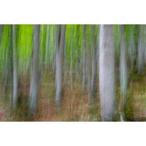 """""""Vertical Movement"""" Photo Print, Aluminium, 30x45 cm"""