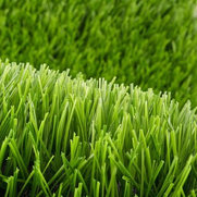 Foto de Advanced Grass