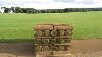 Mitchell Turf - Premium Scottish Lawn Turf
