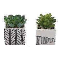 "2-Piece Succulent, Tribal White Ceramic Pot Set, 4"""