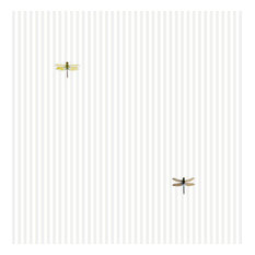 Dragonflies on Light Gray Stripe Shelf Paper Drawer Liner, 36x24, Matte Paper