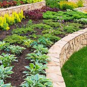 Indianapolis, IN Landscape Contractors