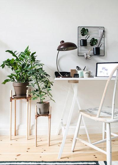 buchtipp wohnen in gr n dekorieren und stylen mit pflanzen. Black Bedroom Furniture Sets. Home Design Ideas
