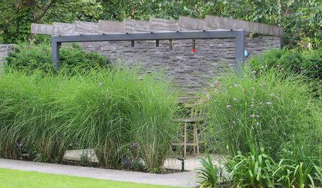 Проблема и решение: Как сделать сад менее заметным для соседей