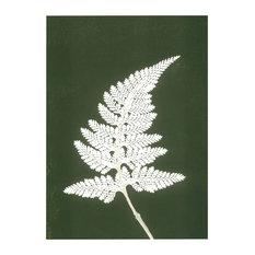 """Fern"" Paper Print, White and Green, 30x40 cm"