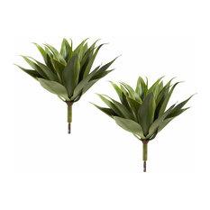 Agave Succulent Plant - Set of 2