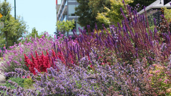 Arbutus Greenway Garden