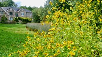 Native Meadow