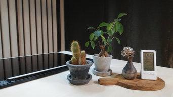 ミニ観葉植物を集めてお気に入りの空間を