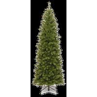 North Valley Spruce Pencil Slim Tree, 6 ft.