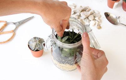 DIY : Créer un terrarium dans un petit bocal