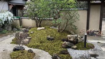 ツツジと苔庭