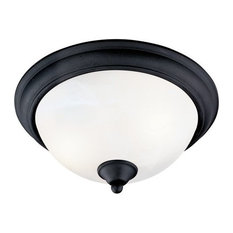 Matte Black Flush Mount Ceiling Light Fixture, 54-5061
