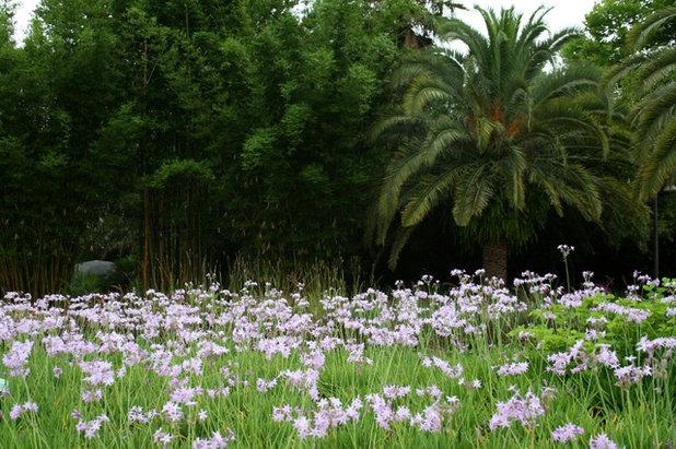 Garden Tour: Inspiration From 10 Botanical Gardens