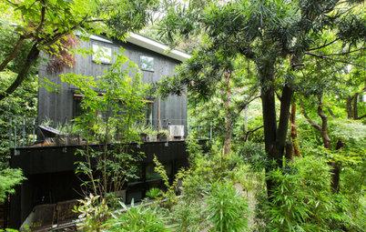 鎌倉の緑に溶け込む、焼杉外壁の3階建て住宅