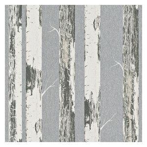 Irvin Gray Birch Tree Wallpaper Rustic Wallpaper By