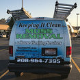 Keeping It Clean Moss Removal and House Washing's profile photo