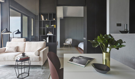 Houzz Tour: A 700 Sq-Ft, 1-BHK is a Calming Retreat