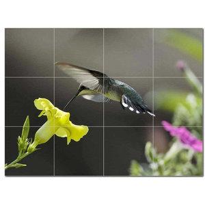 Rikki Knight 6 x 6 Audubon American Crow Plate 156 Design Ceramic Art Tile