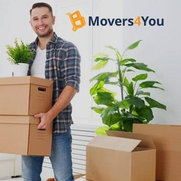 Movers4you's photo