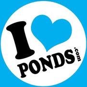 I love ponds.com's photo