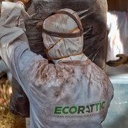 Ecorattic's photo
