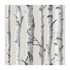 Birch Trees Wallpops Wallpaper Peel and Stick Wallpaper NU1650, Roll