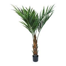 "Pure Garden 60"" Kentia Palm Tree"