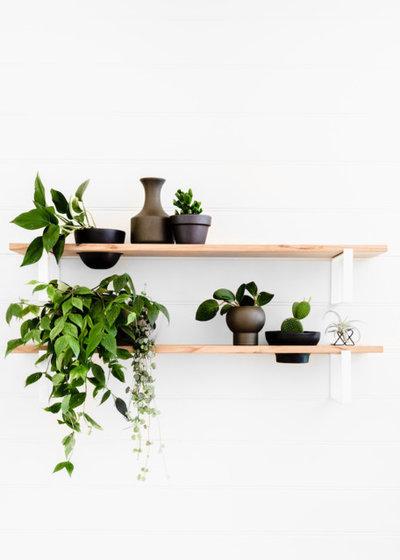 How Do I... Display Indoor Plants?