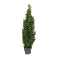 4' Cedar Tree Silk Tree, Indoor or Outdoor