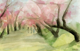 Cherry Blossoms in Central Park Watercolor Print