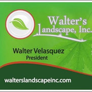 Walter's Landscape, Inc's photo