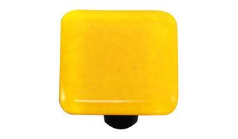 Sunflower Yellow Knob, Black Post