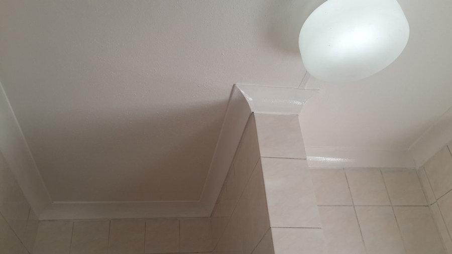 Bathroom Mould (Mold, Mildew) Removal