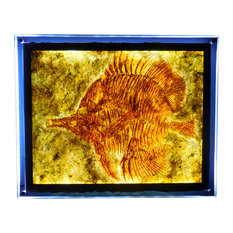"""Fossil of Fire"", Backlit with LED Light Frame"