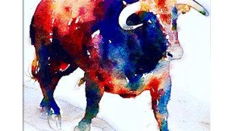 Shabs Beigh - Colourful Bull, 2019