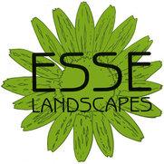 Esse Landscapes's photo