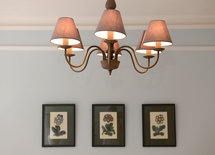 Where is this ceiling light from, its beautiful.