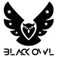 Black Owl ApSs profilbillede