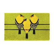 "Light Green Machine Tufted Goldfinch Coir Doormat, 18""x30"""